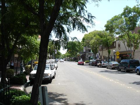 Tree Lined Main St.