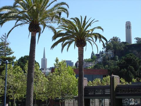 View on 'Needle' and Coit Towe...